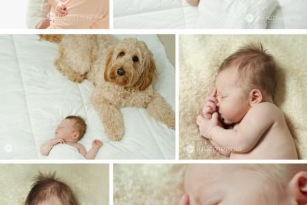 Cape Cod in-home newborn session